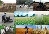 22 درصد اشغال چهارمحال و بختیاری در بخش کشاورزی است