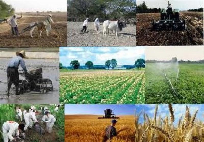 پروژه کشاورزی طرح کشاورزی