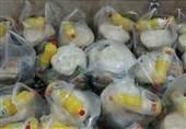 توزیع بستههای حمایت غذایی به اقشار محروم قزوین آغاز شد