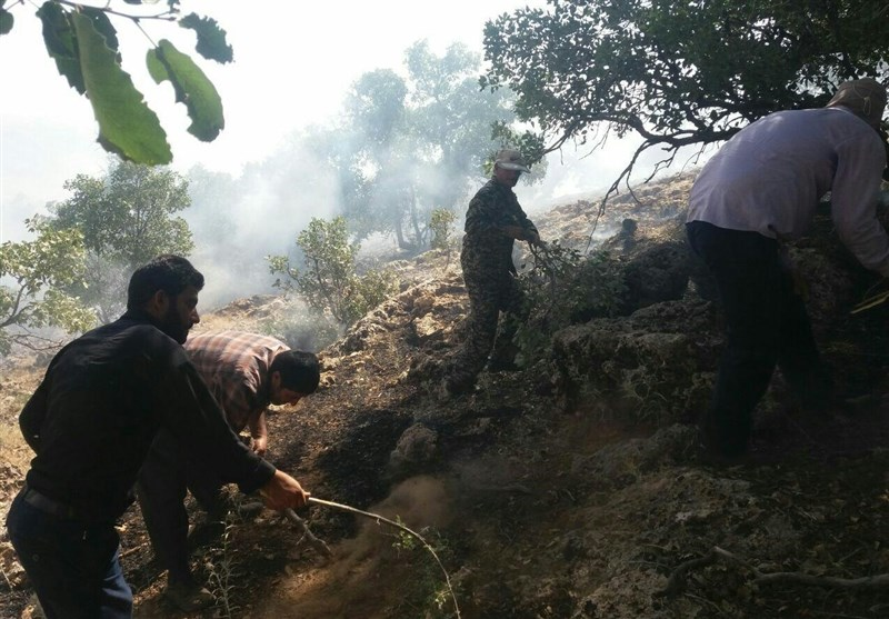 مهار آتش سوزی جنگل