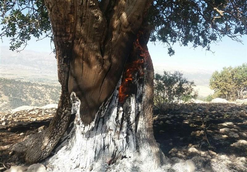 آتش سوزی دشتروم-دارشاهی