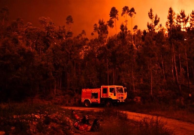 ضبط تصاویر جنگلهای پرتغال پس از آتشسوزی توسط پهپاد + ویدئو