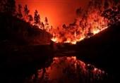 صاعقه علت آتشسوزی گسترده پرتغال اعلام شد/افزایش تعداد قربانیان به 57 نفر