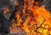 آتشسوزی جنگلها و مراتع استان گیلان مهار شد