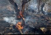 شعلههای آتش در منطقه کوه سفید لنده فروکش کرد