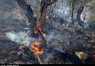 """مهار آتشسوزی جنگل """"لوه"""" در مینودشت گلستان + تصاویر"""