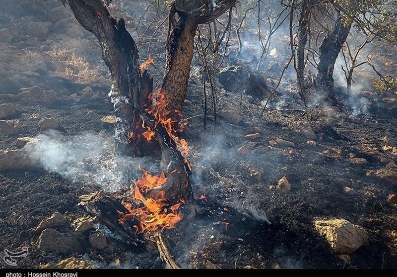 آتش دوباره به جان جنگلهای گلستان افتاد/آمادهباش نیروهای حافظ منابع طبیعی / روزهای بحرانی در پیش است