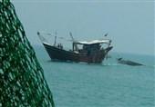 میزان صید میگو در استان بوشهر 27 درصد افزایش یافت