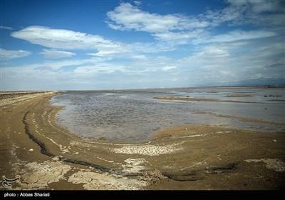 تالاب صالحیه - نظرآباد