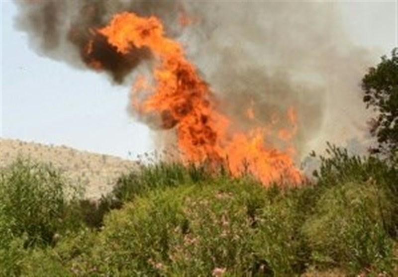 بخش عظیمی از آتش سوزی جنگلهای اندیکا مهار شد/ آتش همچنان در مناطق صعبالعبور زبانه میکشد