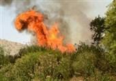 50 درصد آتش سوزیهای کهگیلویه و بویراحمد در شهرستان بویراحمد رخ داده است
