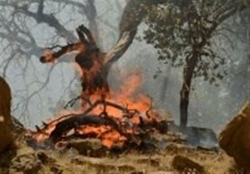 آتشسوزی در ارتفاعات بخش مرکزی ممسنی/ تلاش برای مهار آتش ادامه دارد