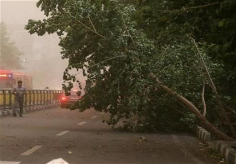 هوای تهران پاک است/ پیش بینی وزش باید شدید در پایتخت