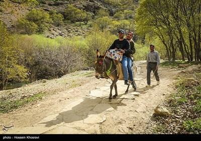 بهشت گمشده در فارس