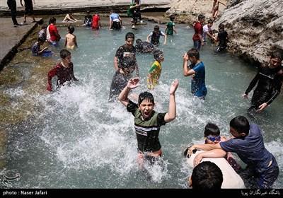آب تنی در چشمه علی