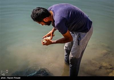 جشنواره تابستانه ماهیگیری سنندج