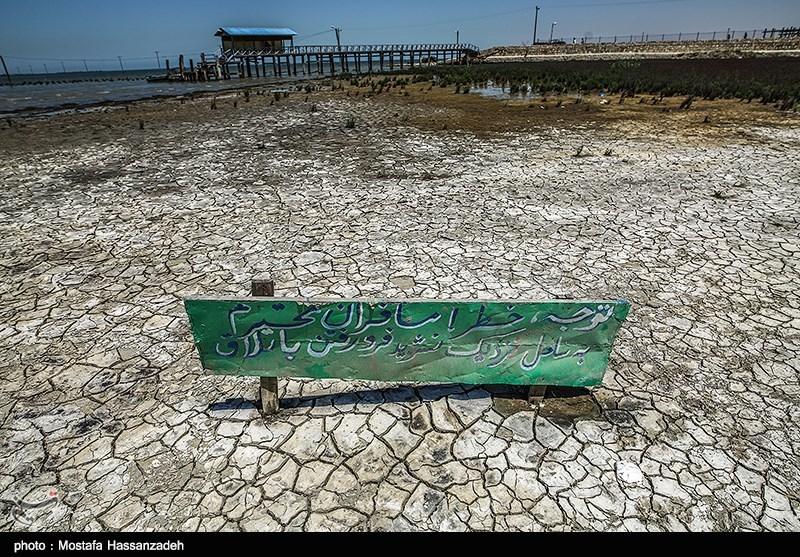 گرگان  خلیج گرگان بیصدامیمیرد؛ دریاخواری آغاز شده است