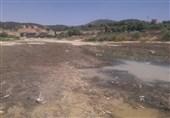 """""""بشار"""" زنده زنده خاک شد/تلف شدن آبزیان رودخانه بشار در سکوت کامل مسئولان +فیلم"""