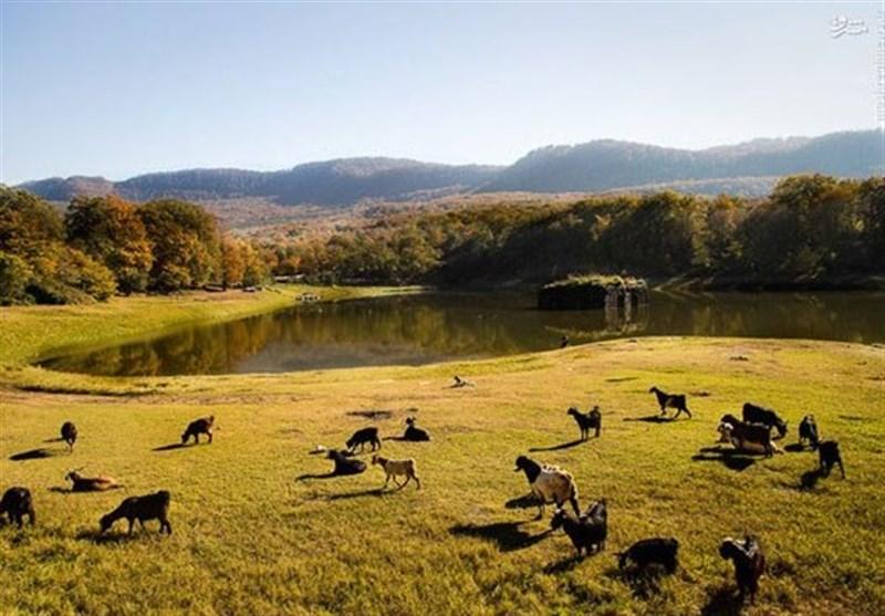 دریاچه عباس آباد؛ بزرگترین باغ تاریخی ایران در انتظار گردشگران+فیلم