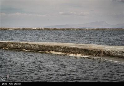 هور میقان فی اراک غربی ایران