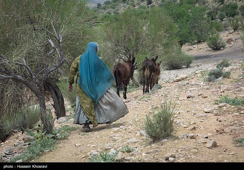 کوچ عشایر استان فارس