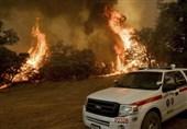 ادامه آتشسوزی کالیفرنیا با 17 کشته و بیش از 200 مفقود + تصاویر