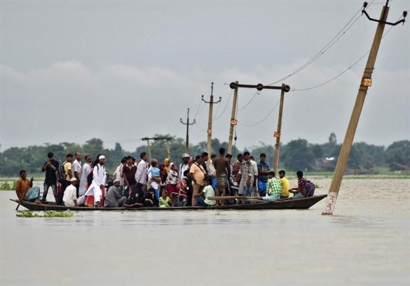 Floods in India's Northeast Kill 40, Endanger Rare One-Horned Rhinos