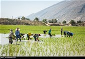فقدان طرح آمایش سرزمین و تاثیر آن بر توسعه آب محور کشور