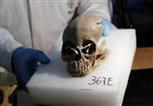 رمزگشایی از جمجمه انسانی که در جردن کشف شد