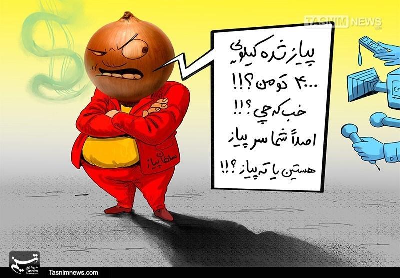 کاریکاتور/ نه سر پیاز نه ته پیاز؟!!