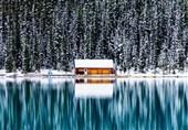 دریاچه آلبرتا