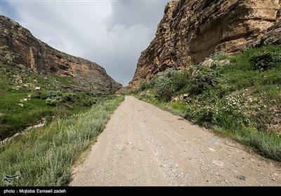 طبیعت تابستانی روستای رند - آذربایجان غربی