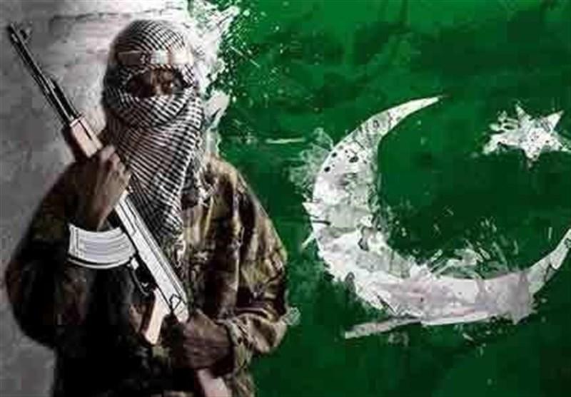اگر پناهگاه تروریستها در پاکستان نابود نشود روسیه، چین و هند قربانی تروریسم خواهند شد