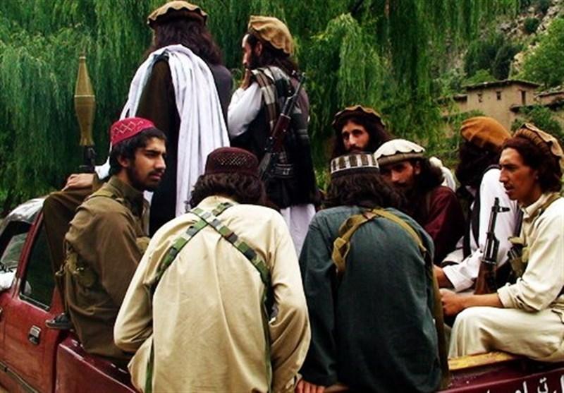 تحریک طالبان