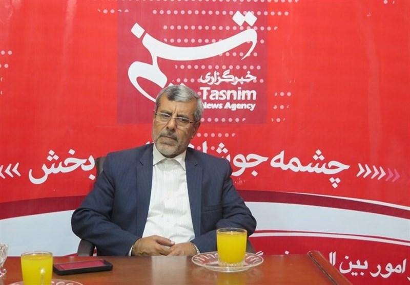 محمد جواد رضوی