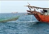 بوشهر| شیلات دیلم مجوز فعالیت صیادان را به روش صید ترال باطل میکند