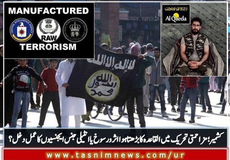 کشمیر؛ مزاحمتی تحریک میں القاعدہ کا بڑھتا ہوا اثر و رسوخ یا انٹیلی جنس ایجنسیوں کا عمل دخل ؟ + ویڈیو
