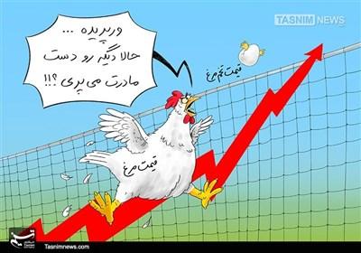 کاریکاتور/ علت بالا رفتن نرخ تخم مرغ !!!