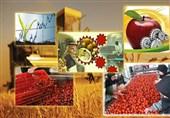 150 هزار تن مواد خام کشاورزی اردبیل جذب صنایع تبدیلی میشود
