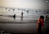 شناگاههای سواحل استان بوشهر پایش میکروبی شد