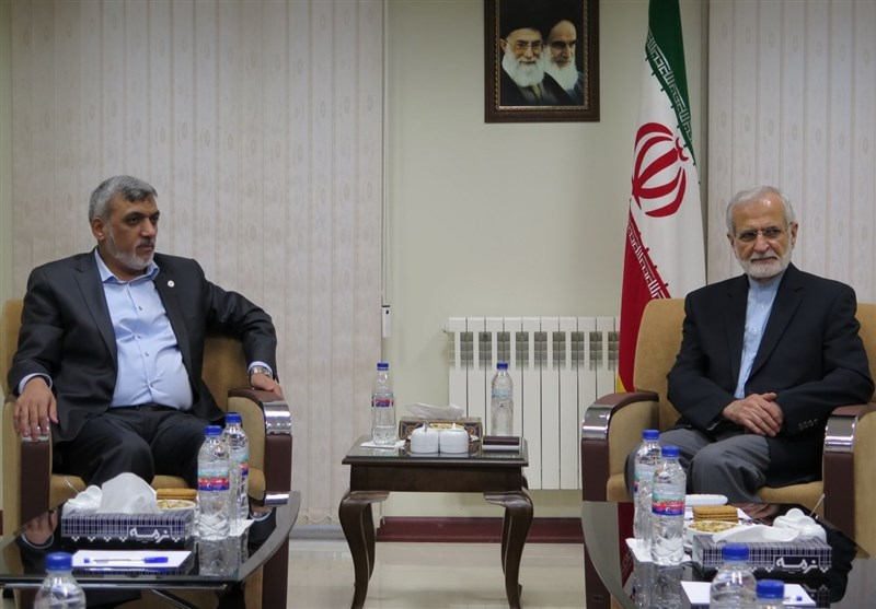 Backing Palestine at Core of Iran's Foreign Policy: Official