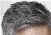 اینفوگرافی| عوامل مؤثر در سفیدی زودرس مو