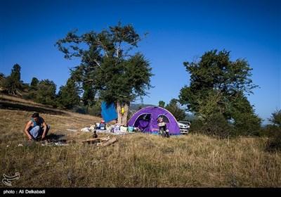 طبیعت تابستانی جنگل اولنگ و چشمه گل رامیان