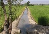 میزان آب مصرفی بخش کشاورزی اردبیل از مرز 90 درصد هم گذشت