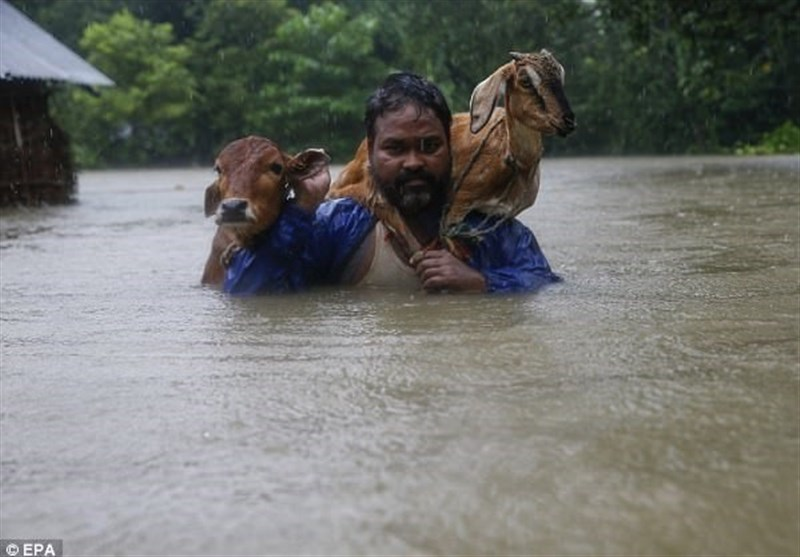 سیل جان 36 نپالی را گرفت