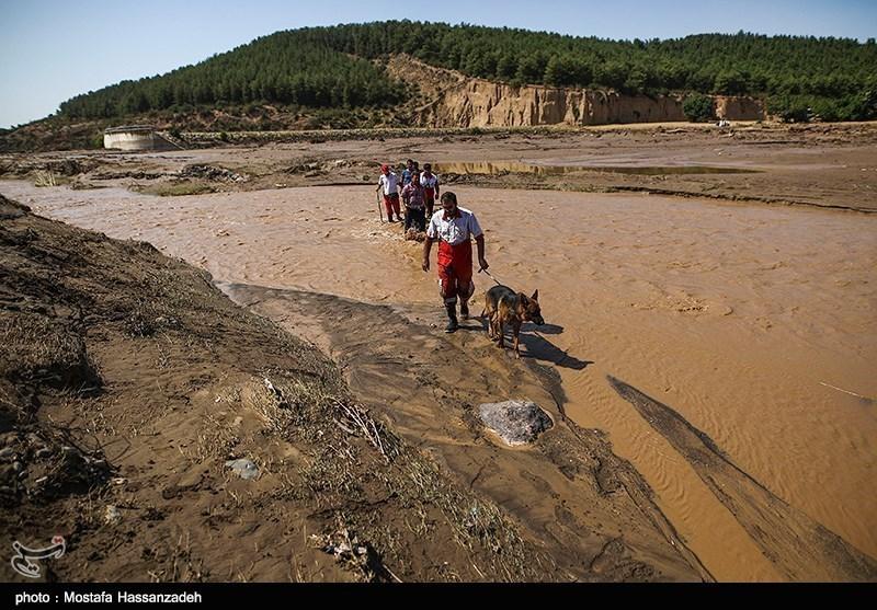 سیل بیش از 119 میلیارد تومان در استان گلستان خسارت وارد کرد
