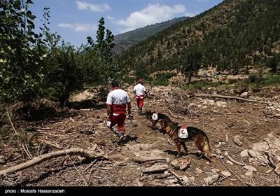 ایران میں سیلاب کی تباہ کاریاں/ لاپتہ افراد کی تلاش جاری
