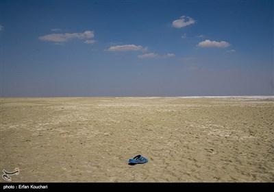 نمایی از قسمت های خشک شده دریاچه ارومیه.خشکی دریاچه خطراتی از جمله: ایجاد ریزگردهای نمکی, بیابان زایی, ایجاد بیماری های پوستی و تنفسی , افزایش مهاجرت و تخلیه روستای مجاور دریاچه و از بین رفتن اراضی کشاورزی حوضه را در بر خواهد داشت.