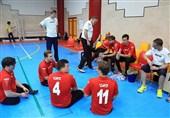 والیبال نشسته آلمان