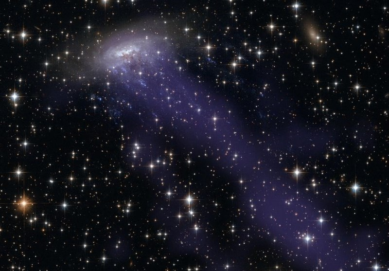 How Tentacles of Jellyfish Galaxies Feed Supermassive Black Holes